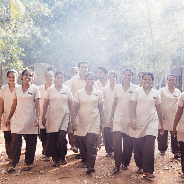 team vaidyas ayurveda village