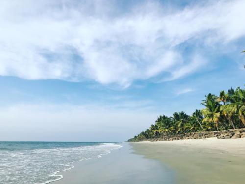 OceanGarden_Beach_7403